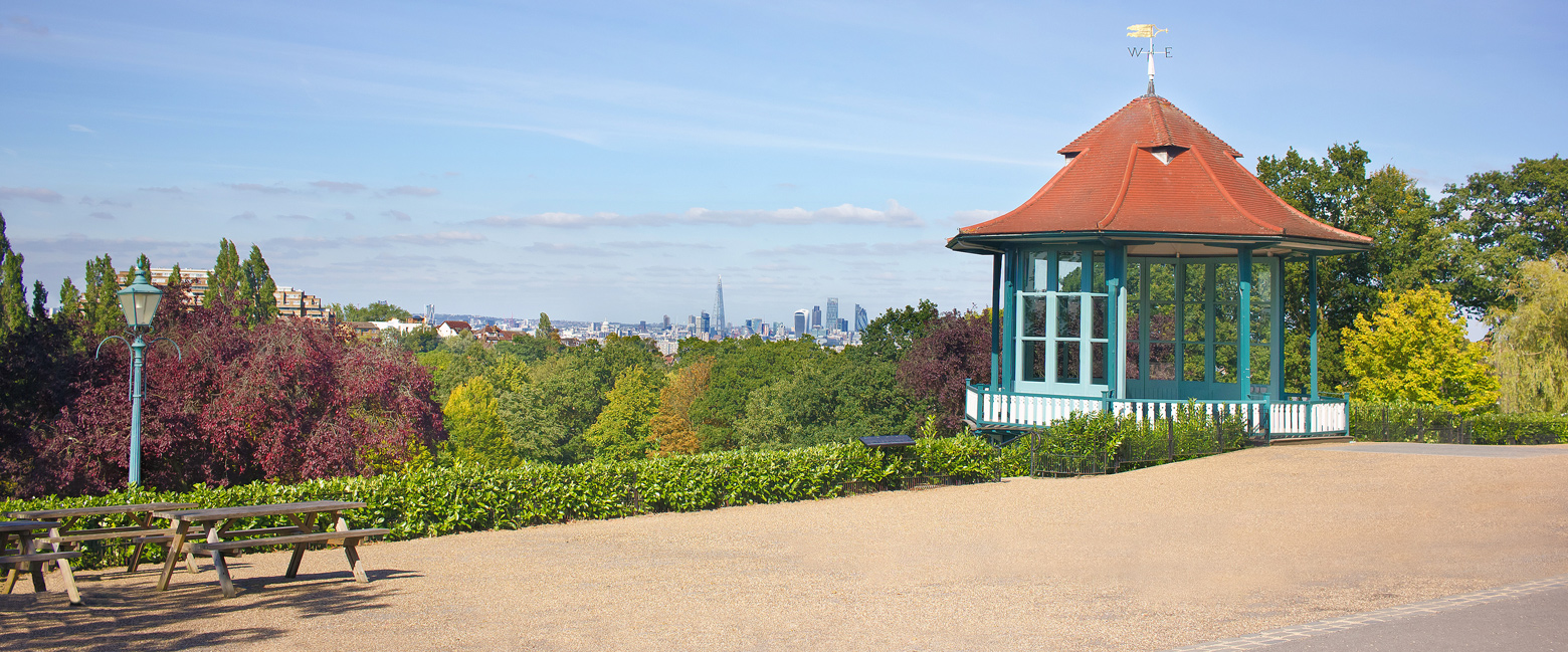 View of South London from Forest Hill